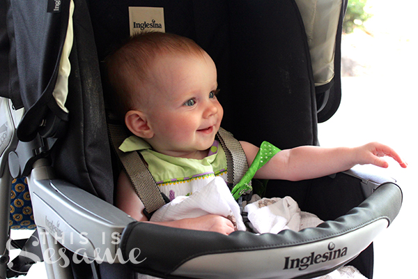 8-months-in-the-stroller